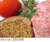 Купить «Помидор, колбаса-сервелат, веточка укропа и ржаной хлеб с горчицей», фото № 299688, снято 24 мая 2008 г. (c) Заноза-Ру / Фотобанк Лори