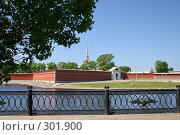 Купить «Санкт-Петербург. Вид на Петропавловскую крепость», фото № 301900, снято 28 мая 2008 г. (c) Александр Секретарев / Фотобанк Лори