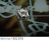 Купить «Ашер», фото № 302016, снято 17 ноября 2006 г. (c) Дмитриев Сергей / Фотобанк Лори