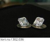 Купить «Бриллиантовые братья», фото № 302036, снято 17 ноября 2006 г. (c) Дмитриев Сергей / Фотобанк Лори