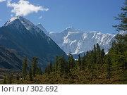 Горы на фоне леса. Редакционное фото, фотограф Андрей Пашкевич / Фотобанк Лори