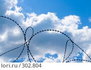 Купить «Колючая проволока на фоне неба», фото № 302804, снято 29 мая 2008 г. (c) Алексей Калашников / Фотобанк Лори