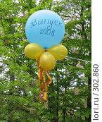 Купить «Праздничные шарики», фото № 302860, снято 17 мая 2008 г. (c) Иван / Фотобанк Лори