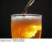 Купить «Пиво», фото № 303052, снято 21 января 2007 г. (c) Роман Сигаев / Фотобанк Лори