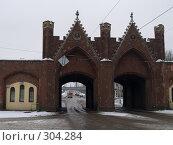 Купить «Бранденбургские (Берлинские) ворота. Калининград», фото № 304284, снято 1 января 2008 г. (c) Liseykina / Фотобанк Лори
