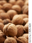 Купить «Грецкие орехи», фото № 305420, снято 23 сентября 2005 г. (c) Кравецкий Геннадий / Фотобанк Лори