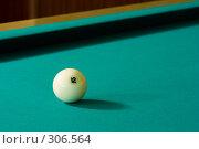 Купить «Бильярдный шар», фото № 306564, снято 31 мая 2008 г. (c) Рыбин Павел / Фотобанк Лори