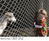 Девочка и коза (2008 год). Редакционное фото, фотограф Алла Максимчук / Фотобанк Лори