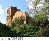 Купить «Водонапорная башня 17-го века», фото № 307956, снято 4 мая 2008 г. (c) Эдуард Кольга / Фотобанк Лори