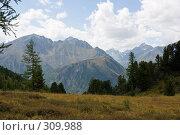 Алтайские горы, фото № 309988, снято 26 сентября 2017 г. (c) Андрей Пашкевич / Фотобанк Лори