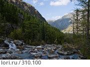 Купить «Горная река вдоль склона», фото № 310100, снято 14 ноября 2018 г. (c) Андрей Пашкевич / Фотобанк Лори