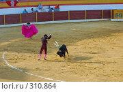 Купить «Коррида», фото № 310864, снято 13 августа 2006 г. (c) Знаменский Олег / Фотобанк Лори
