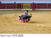Купить «Коррида», фото № 310868, снято 13 августа 2006 г. (c) Знаменский Олег / Фотобанк Лори