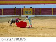 Купить «Коррида», фото № 310876, снято 13 августа 2006 г. (c) Знаменский Олег / Фотобанк Лори