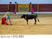 Купить «Коррида», фото № 310880, снято 13 августа 2006 г. (c) Знаменский Олег / Фотобанк Лори