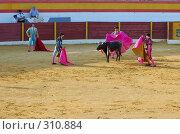 Купить «Коррида», фото № 310884, снято 13 августа 2006 г. (c) Знаменский Олег / Фотобанк Лори