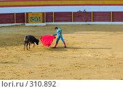Купить «Коррида», фото № 310892, снято 13 августа 2006 г. (c) Знаменский Олег / Фотобанк Лори