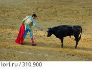 Купить «Коррида», фото № 310900, снято 13 августа 2006 г. (c) Знаменский Олег / Фотобанк Лори