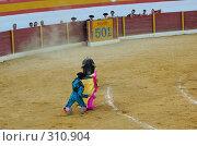 Купить «Коррида», фото № 310904, снято 13 августа 2006 г. (c) Знаменский Олег / Фотобанк Лори