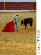 Купить «Коррида», фото № 310936, снято 13 августа 2006 г. (c) Знаменский Олег / Фотобанк Лори