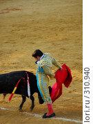 Купить «Коррида», фото № 310940, снято 13 августа 2006 г. (c) Знаменский Олег / Фотобанк Лори