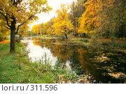 Купить «Пруд в старинном парке», фото № 311596, снято 19 сентября 2018 г. (c) Дмитрий Яковлев / Фотобанк Лори
