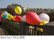 Купить «Открытие моста любви в Яблоневом саду», фото № 312456, снято 26 апреля 2008 г. (c) Сергей Васильев / Фотобанк Лори