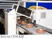 Купить «Упаковка свежего черного хлеба», фото № 314428, снято 29 октября 2006 г. (c) Сергей Байков / Фотобанк Лори