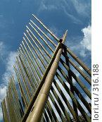 Купить «Бамбуковые стебли перекрещенные в виде шатра», фото № 316188, снято 22 июля 2006 г. (c) Тарановский Д. / Фотобанк Лори
