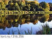 Купить «Пейзаж», эксклюзивное фото № 316356, снято 24 мая 2018 г. (c) Николай Винокуров / Фотобанк Лори