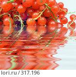 Купить «Красная смородина в воде», фото № 317196, снято 29 января 2020 г. (c) ElenArt / Фотобанк Лори