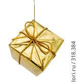 Купить «Новогоднее елочное украшение на белом фоне», фото № 318384, снято 11 ноября 2006 г. (c) Анатолий Заводсков / Фотобанк Лори