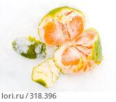 Купить «Очищенный мандарин в снегу», фото № 318396, снято 11 ноября 2006 г. (c) Анатолий Заводсков / Фотобанк Лори
