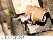 Купить «Березовая кора», фото № 321084, снято 18 мая 2008 г. (c) Боев Дмитрий / Фотобанк Лори