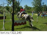 Купить «Конкур», фото № 322240, снято 12 июня 2008 г. (c) Талдыкин Юрий / Фотобанк Лори