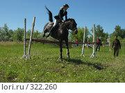 Купить «Конкур», фото № 322260, снято 12 июня 2008 г. (c) Талдыкин Юрий / Фотобанк Лори