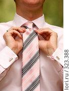 Купить «Мужской галстук», фото № 323388, снято 6 июня 2008 г. (c) Морозова Татьяна / Фотобанк Лори