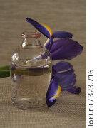 Купить «Одна бутылка с маслом и цветок», фото № 323716, снято 28 января 2008 г. (c) Останина Екатерина / Фотобанк Лори