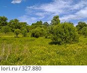 Купить «Летний солнечный день на цветущей поляне», фото № 327880, снято 10 июня 2008 г. (c) Олег Рубик / Фотобанк Лори