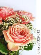 Букет розовых роз на светлом фоне. Стоковое фото, фотограф Марина Субочева / Фотобанк Лори
