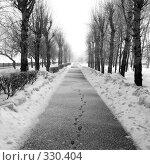 Следы зимы. Стоковое фото, фотограф Барабанов Максим Олегович / Фотобанк Лори