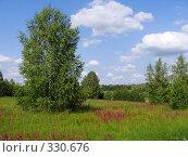 Лето в окрестностях Елатьмы. Стоковое фото, фотограф Александр Бобиков / Фотобанк Лори