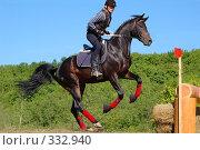 Купить «Прыжок через бревна», фото № 332940, снято 6 июня 2008 г. (c) Абрамова Ирина / Фотобанк Лори