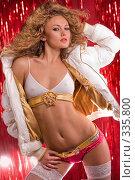 Купить «Красивая девушка в гламурном нижнем белье на блестящем, красном фоне», фото № 335800, снято 5 января 2008 г. (c) Эдуард Стельмах / Фотобанк Лори