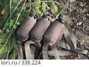 Купить «Три походные фляжки на фоне сосновых лап», фото № 338224, снято 21 июня 2008 г. (c) Круглов Олег / Фотобанк Лори
