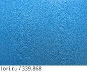 Купить «Голубая бархатная бумага. Макро.», фото № 339868, снято 21 июня 2008 г. (c) Заноза-Ру / Фотобанк Лори