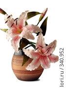 Цветы в вазе. Стоковое фото, фотограф Светлана Симонова / Фотобанк Лори
