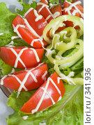 Купить «Салат из свежих овощей, украшенный майонезом», фото № 341936, снято 19 июня 2008 г. (c) Федор Королевский / Фотобанк Лори