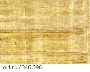 Купить «Фактура папируса», фото № 346396, снято 22 октября 2018 г. (c) Retro / Фотобанк Лори
