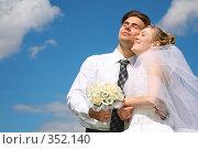 Купить «Невеста и жених, на фоне неба», фото № 352140, снято 15 октября 2018 г. (c) Losevsky Pavel / Фотобанк Лори